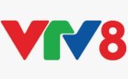 VTV 8 TV Live