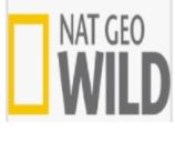 Nat Geo Wild TV Live